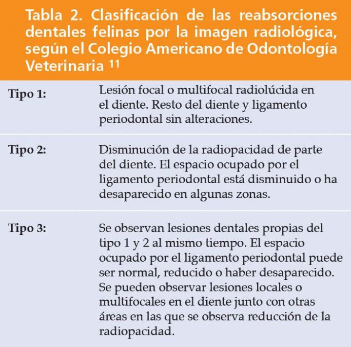 Diagnóstico y tratamiento de la reabsorción dental felina. A ...