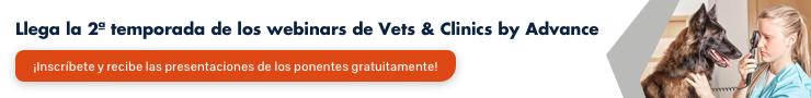 blog veterinaria
